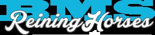 BMS Reining Horses // Zucht & Verkauf / Deckhengste